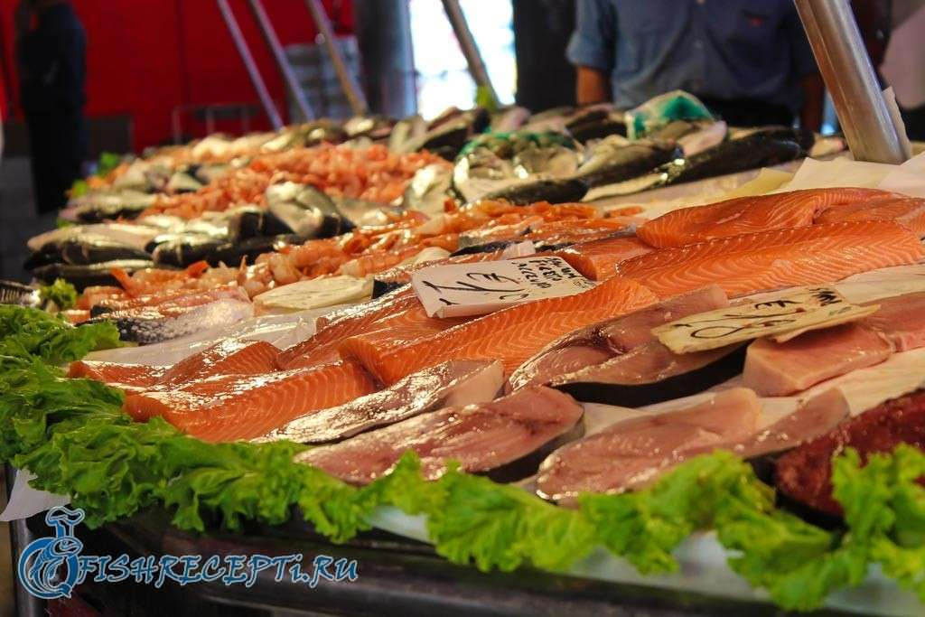 какую рыбу выбрать