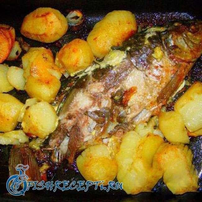 запеченный карп в духовке с картошкой